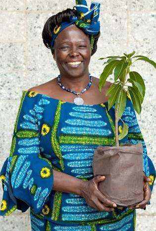 Wangari Mathaai. Alev'den✍🏻💫